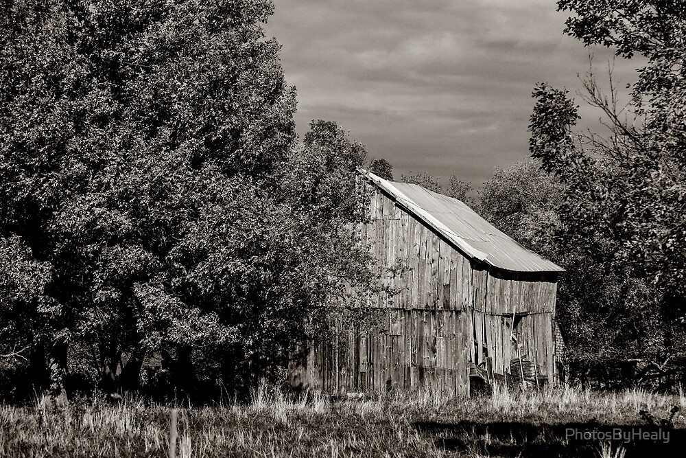 The Old Barn by PhotosByHealy