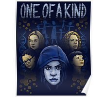 One of a Kind Poster