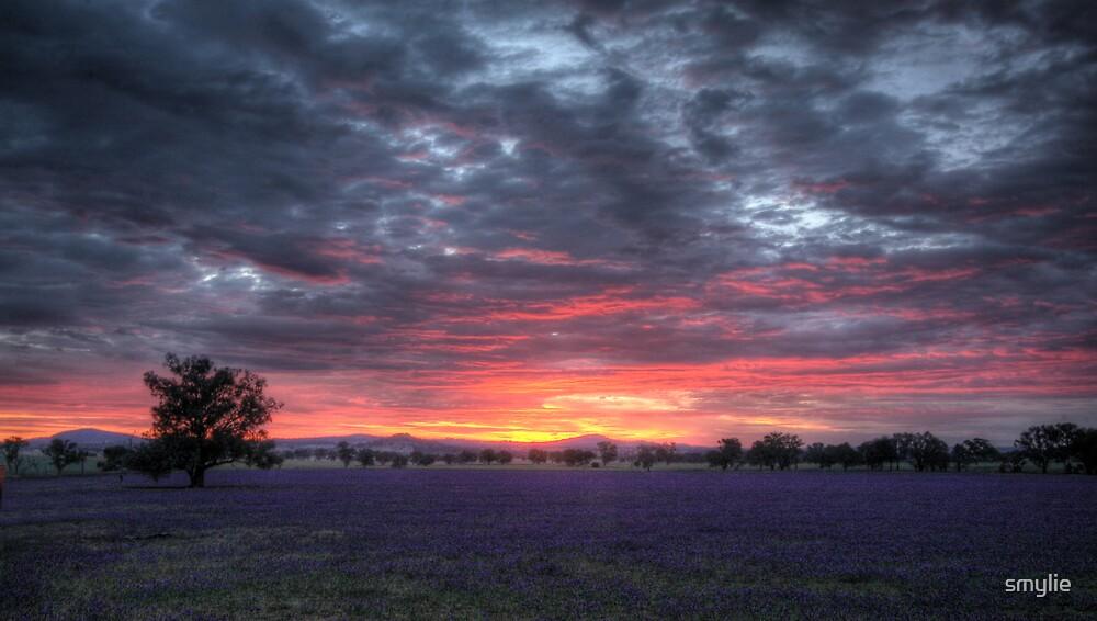 Wymah Sunset by smylie
