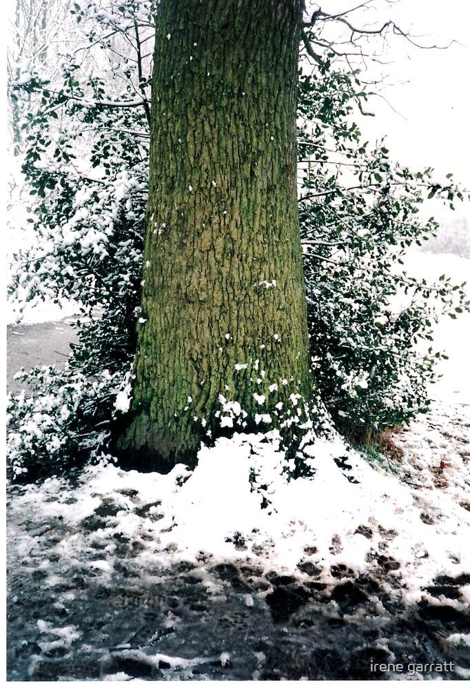 winter by irene garratt
