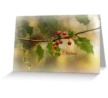 Christmas Holly` Greeting Card