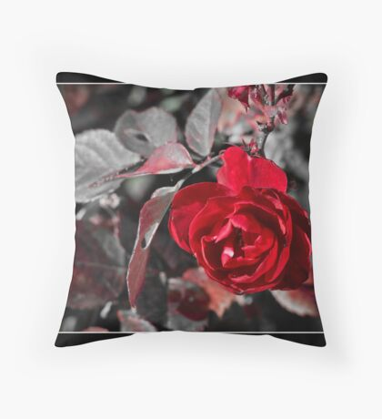 Desaturated Rose I Throw Pillow
