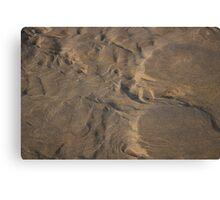 Nature Sand Sculpture Canvas Print