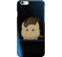 Wibbly Wobbly Timey Wimey...Phony Casy iPhone Case/Skin