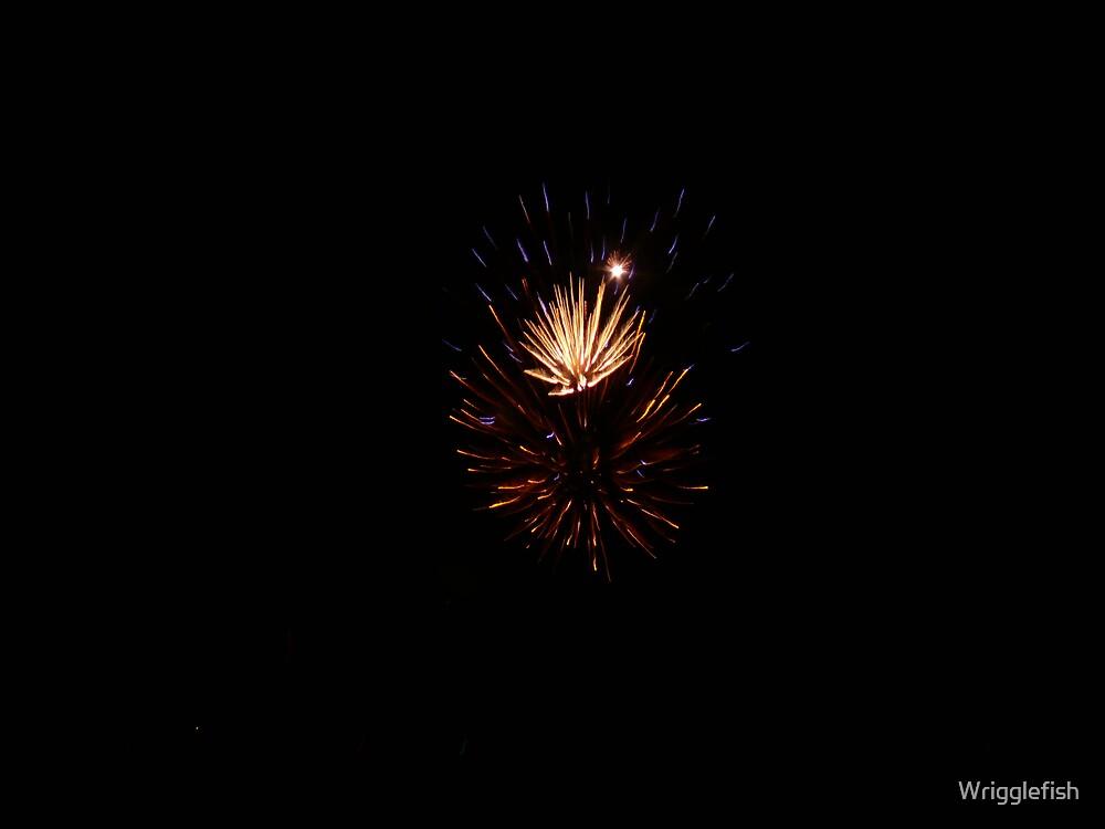 Fireworks by Wrigglefish