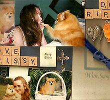 In Memory or My Beloved Prissy by karen66