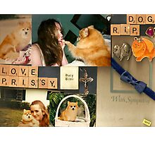 In Memory or My Beloved Prissy Photographic Print