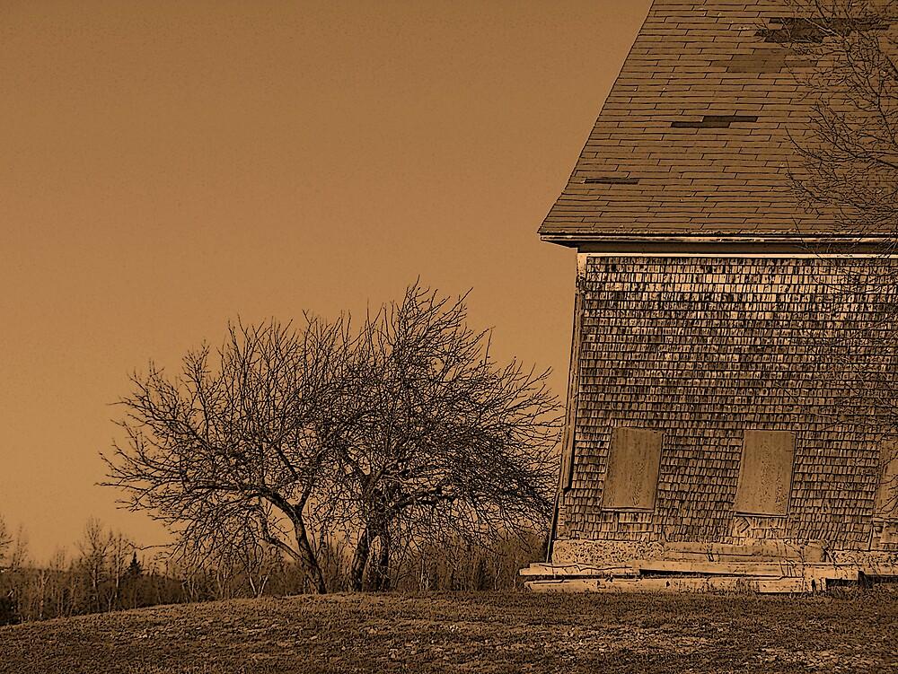 Barn In Brown by Gene Cyr