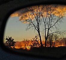 Autumn Colors thru the Rear View Mirror II by Karen Goad