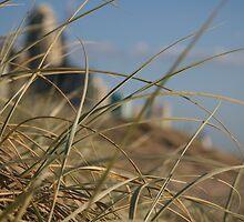 Dunes by Grahame Clark