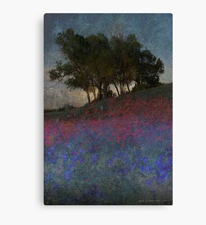moonrise through the oak Canvas Print