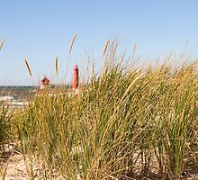 Dune Grass and Lighthouse by JKunnen