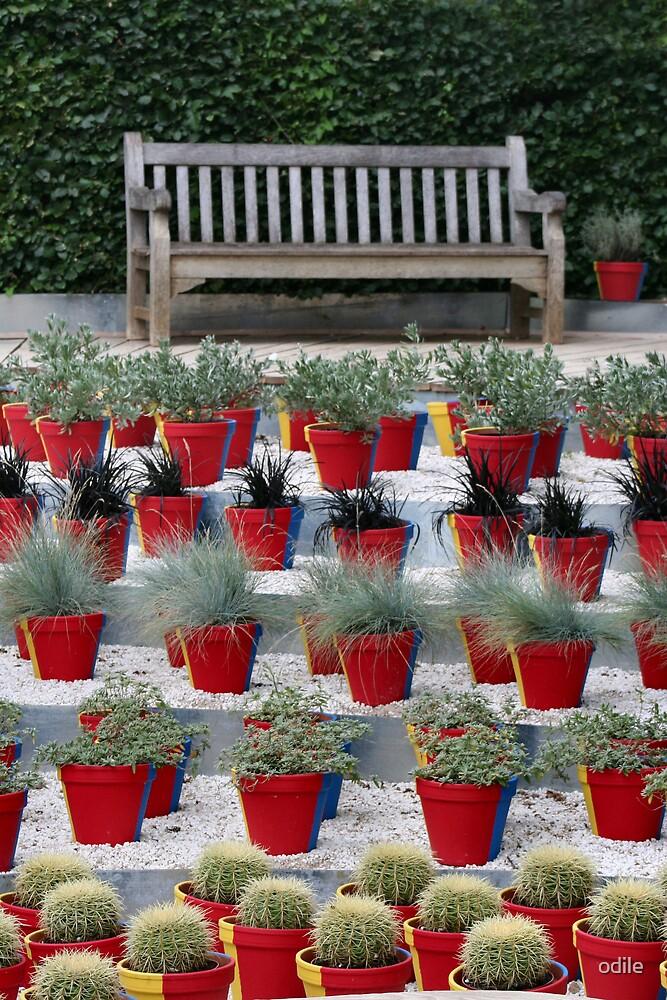 garden bench by odile