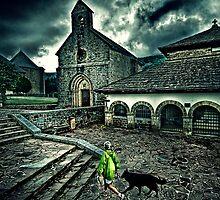 Camino de Santiago con un perro by elsilencio