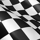 checked flag by Tony  Bazidlo