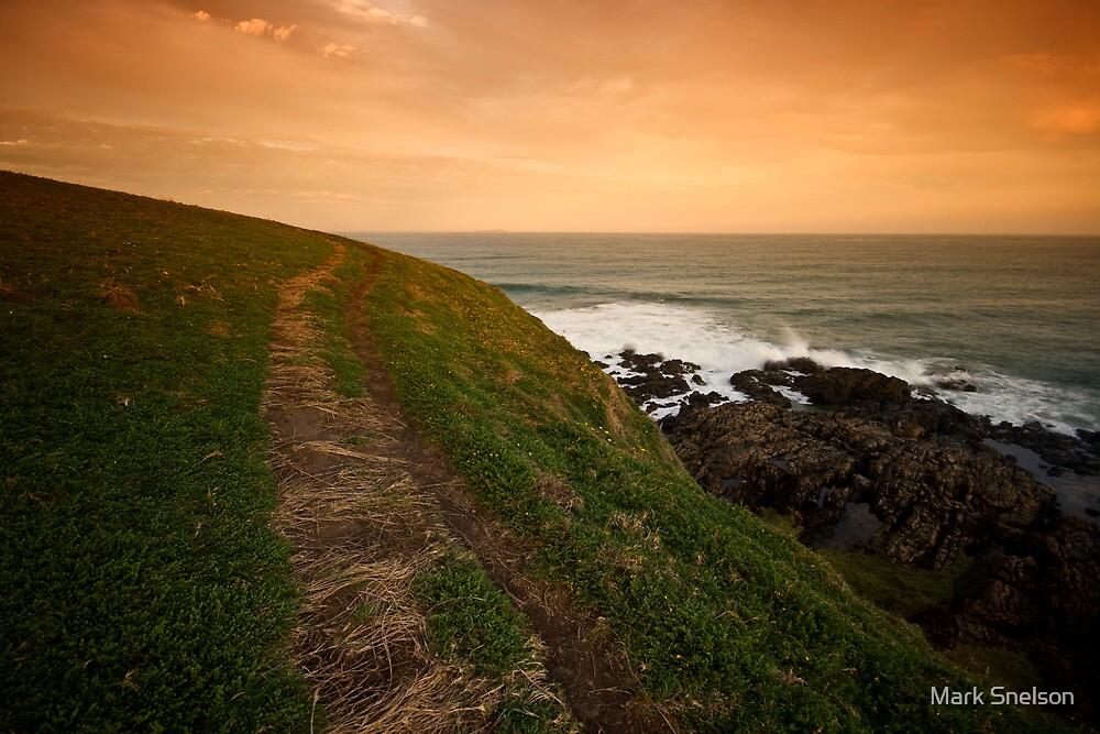 Coastal Path by Mark Snelson