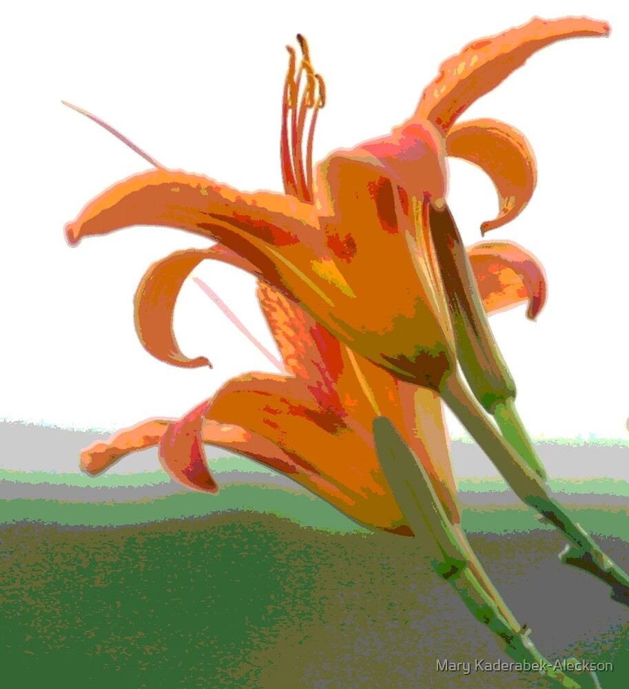 Lilies in the Air by Mary Kaderabek-Aleckson