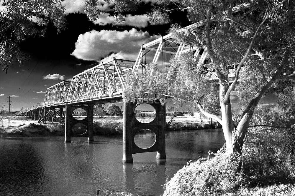The Morpeth Bridge by rossco