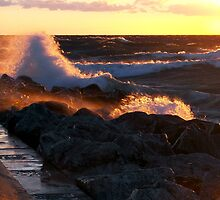 Gale Warning by Maria Dryfhout