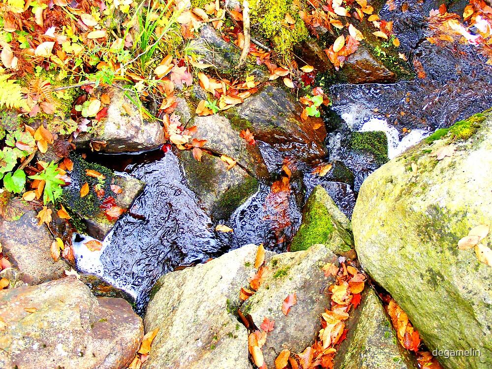 autumn colors by degamelin
