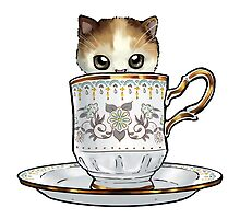 Kitten in a Tea Cup by ninniku
