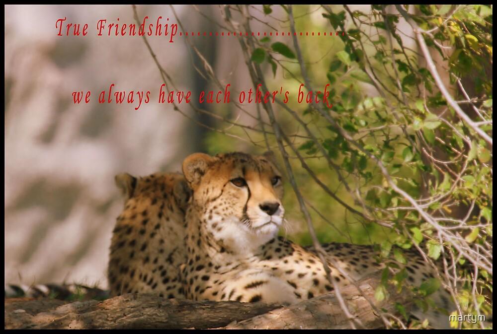 friendship card by martym