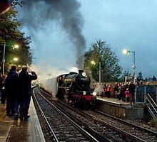 Steam Excursion at Sanderstead by EricHands