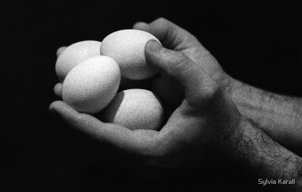 Eggs by Sylvia Karall