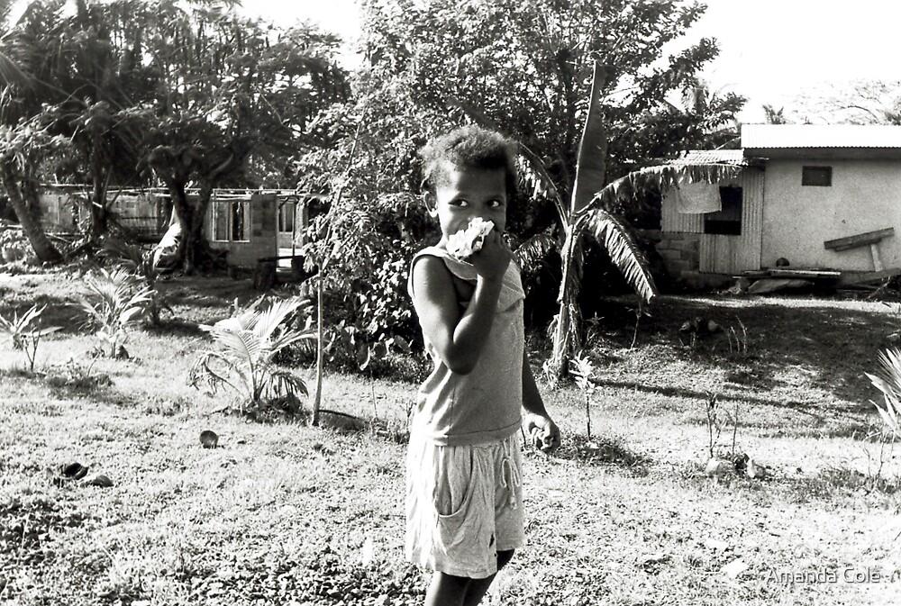 Fiji series by Amanda Cole