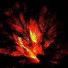 Firey by Carl Osbourn
