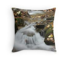 Small Waterworld Throw Pillow