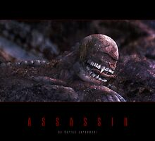 Assassin by houk