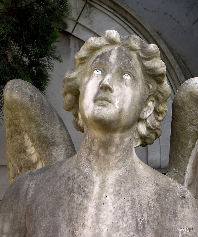 angelo 2 by sergu