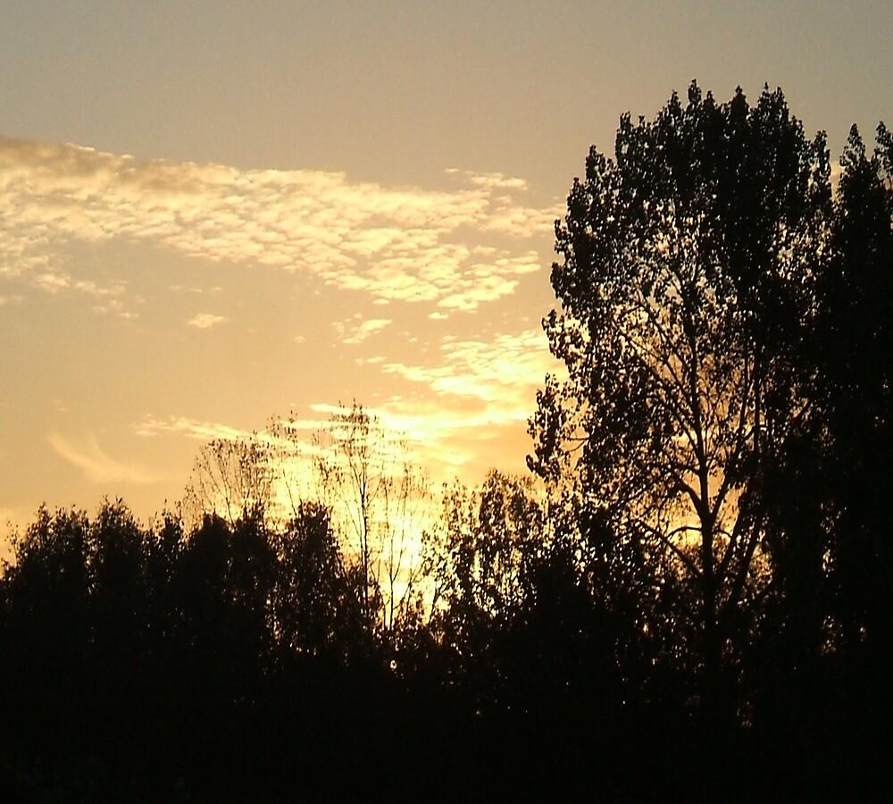 Sundown by Catherine Brock