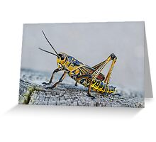 Painted Grasshopper Greeting Card