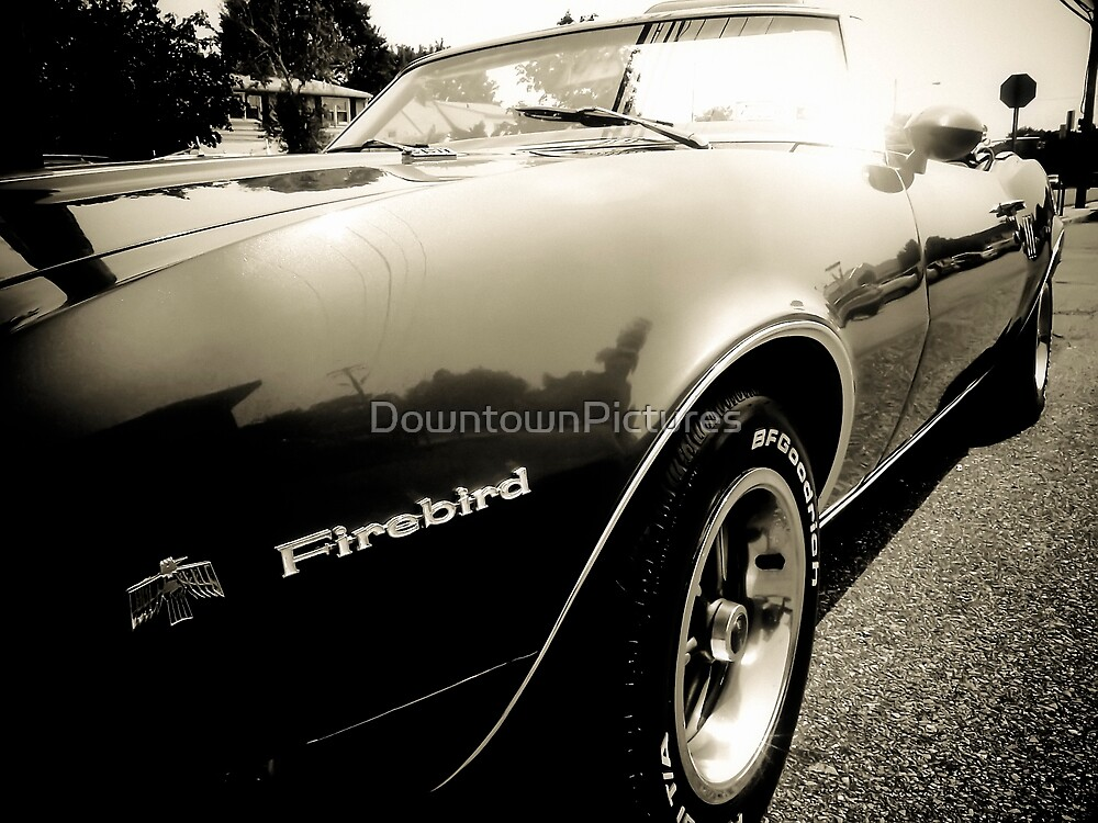 American Muscle by DowntownPictures