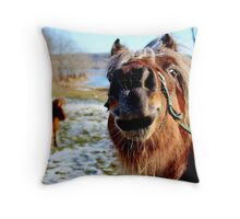 The Comedian  Throw Pillow