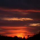 SOUTH FLORIDA SUNRISE by nikki024