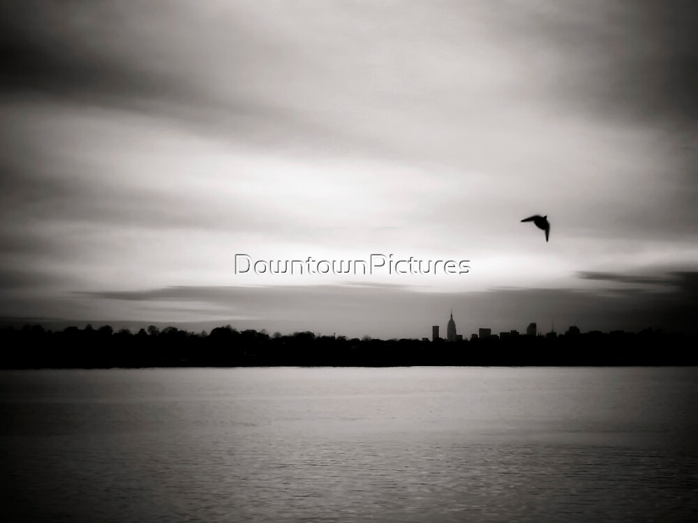 A Peaceful View by DowntownPictures
