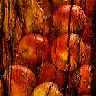 Apple tree by Per E. Gunnarsen