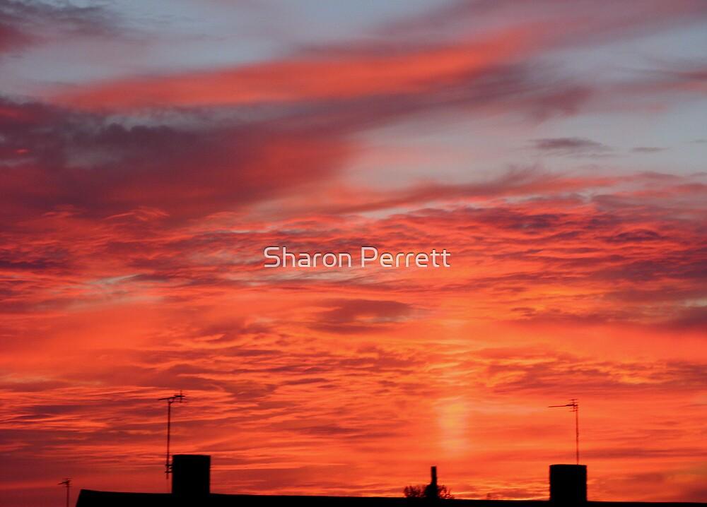 Liquid Sunset by Sharon Perrett