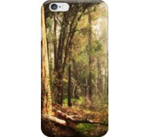 Winter Wanderings By Lorraine McCarthy iPhone Case/Skin