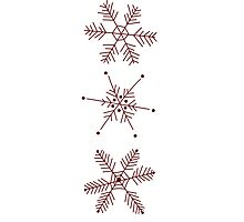 3 Snowflakes Option 1 Photographic Print