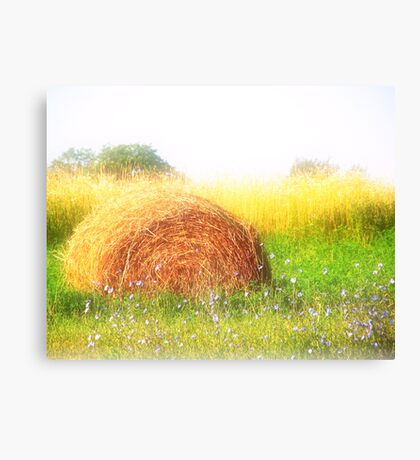 Dreamy Summers Canvas Print