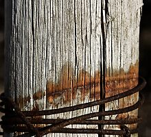 Weathered post by MagnusAgren