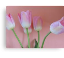 Romancing Tulips Canvas Print