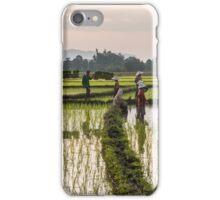 Rice paddies in Khammouane iPhone Case/Skin