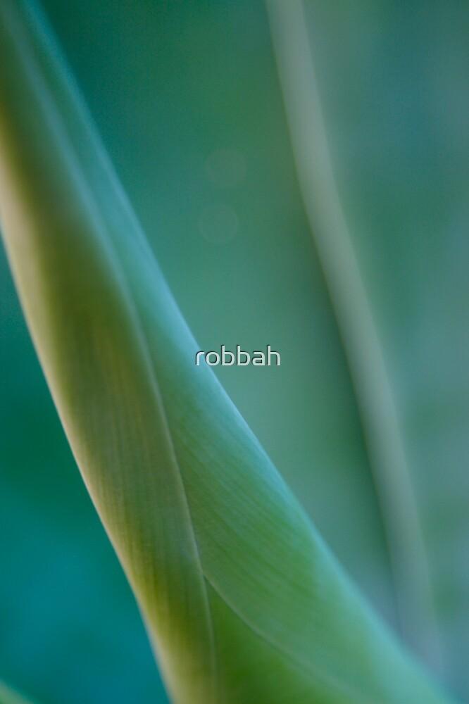 Yukka 3 by robbah