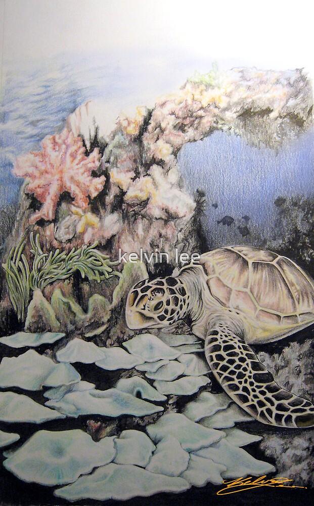 Ocean series 3 of 3 by kelvin lee
