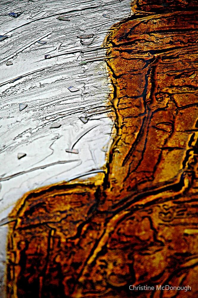 silver sky desert by Christine McDonough